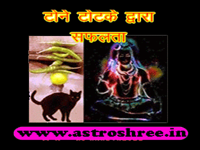 best astrologer totke for wish fulfilling