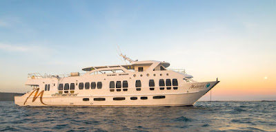 Why select a Live-Aboard Cruises in Galapagos?
