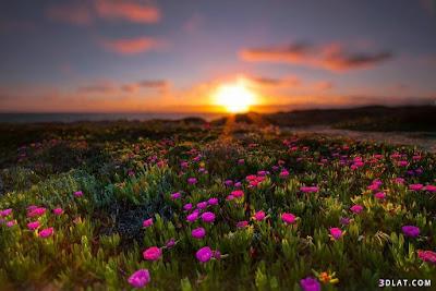 خلفيات مناظر طبيعية روعة شروق الشمس