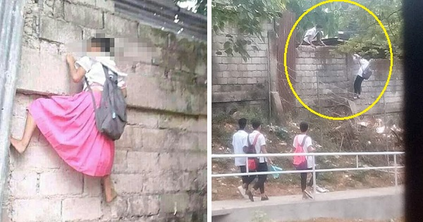 Students climbing dangerous school fence to 'cut classes' earn mixed reactions