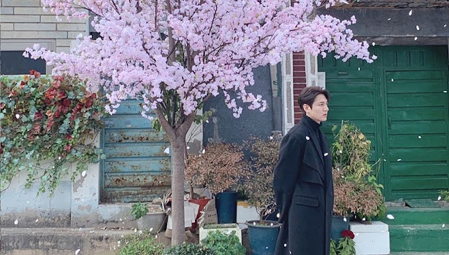 Profil dan Biodata Lee Min Ho Aktor City Hunter Paling Fenomenal
