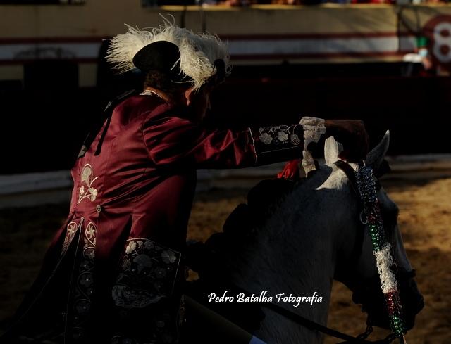 Concurso de Ganadarias em Salvaterra - as imagens