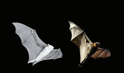 Struktur Smart Bird Bionic FlyingFox