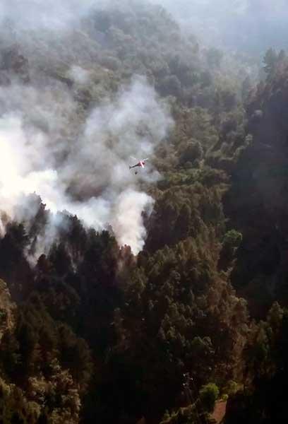 Incendio forestal en Valleseco, Gran Canaria 16 de mayo