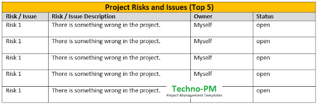 how to write effective project status