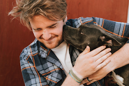 How to Calm an Aggressive Dog: Step-by-Step Guide