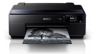 Epson SureColor SC-P600 Driver Downloads