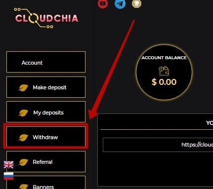 Вывод средств в Cloudchia