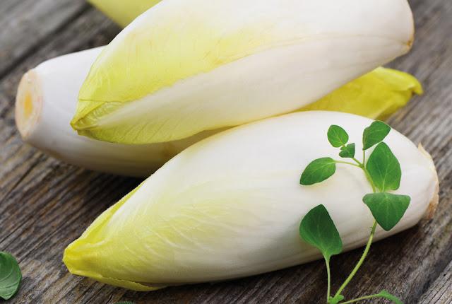 Chicorée: Der frische Salat aus der Dunkelkammer