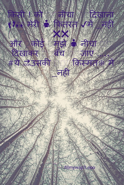 hindi Shayari download photos