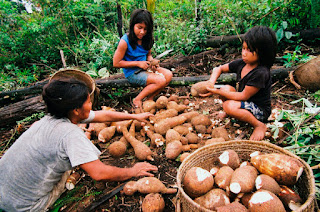 crianças preparando alimento