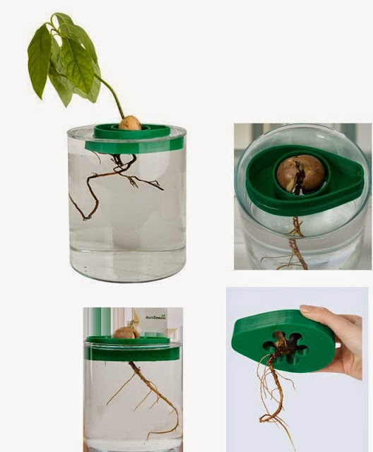 Smart and Innovative Gardening Gadgets (15) 9