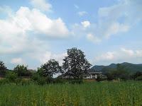 hahoe village andong corea