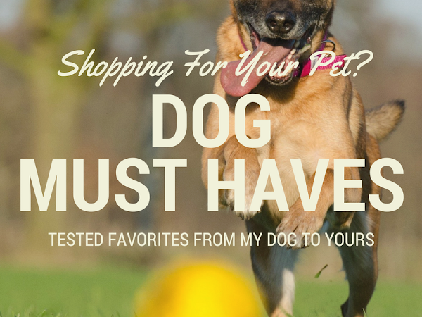 Dog Must Haves
