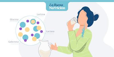 Causa intolerancia lactosa leche