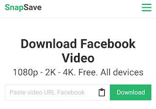 SnapSave - Facebook Video Downloader.