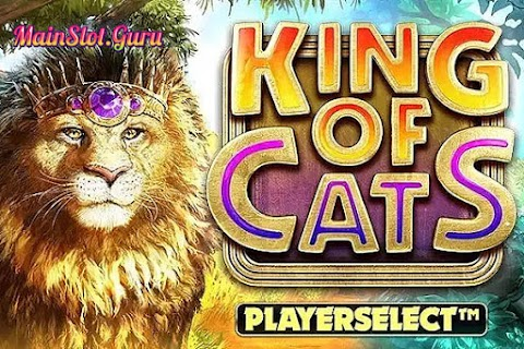 Main Gratis Slot King of Cats Megaways (Big Time Gaming) | 96.70% RTP