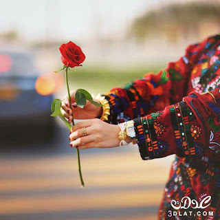 صور ورود 2020 اجمل صور زهور احلى صور ورود جميلة زينه