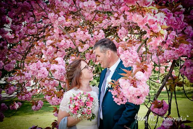 portrait couple mariés dans cerisiers roses en fleurs