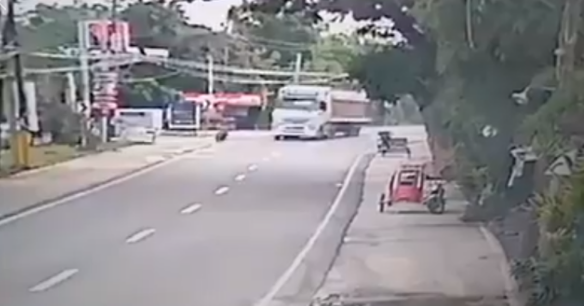 Truck Driver Hailed for Impressive Driving Skills after Avoiding Fallen Biker