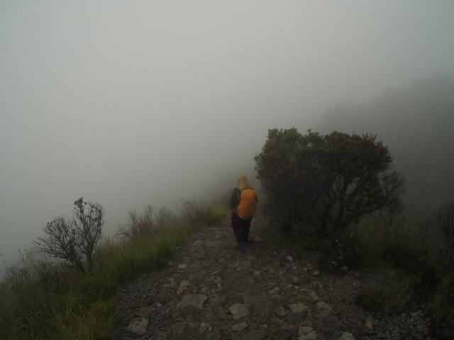 Bagaimana Jalur Pendakian Di Gunung Lawu Untuk Pemula True Story 2 Si Embun