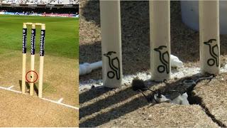 Stump Camera, stump mic, cricket tech in stump