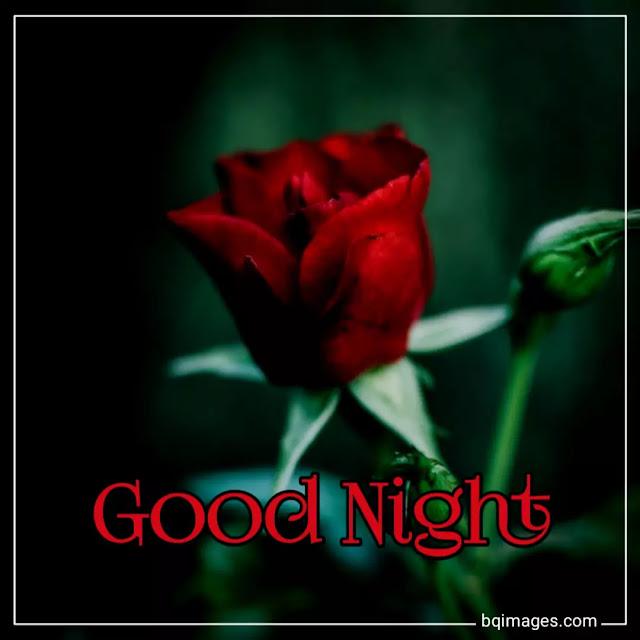 beautiful good night photos download