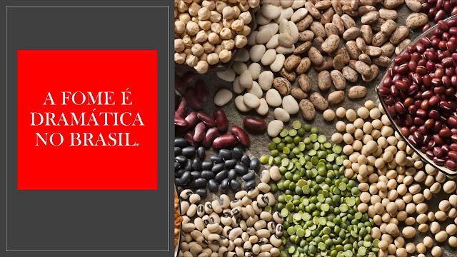 A foto mostra uma variedade de alimentos que não chegam a mesas dos brasileiros. A fome é dramática no Brasil.