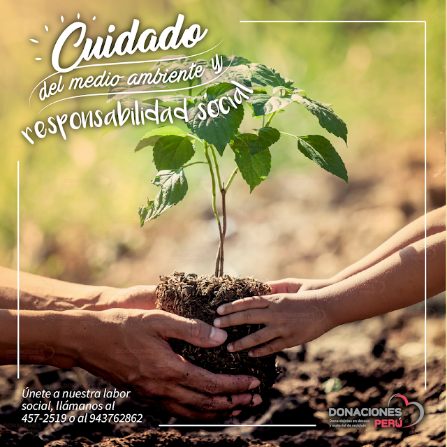 Cuidado del medio ambiente - responsabilidad social