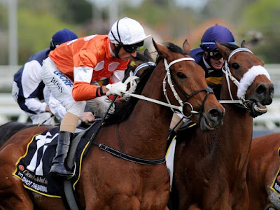 Five Times a Massive Outsider Won The Melbourne Cup