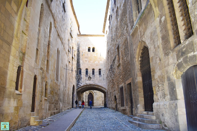 Pasaje del Ancla, Narbona