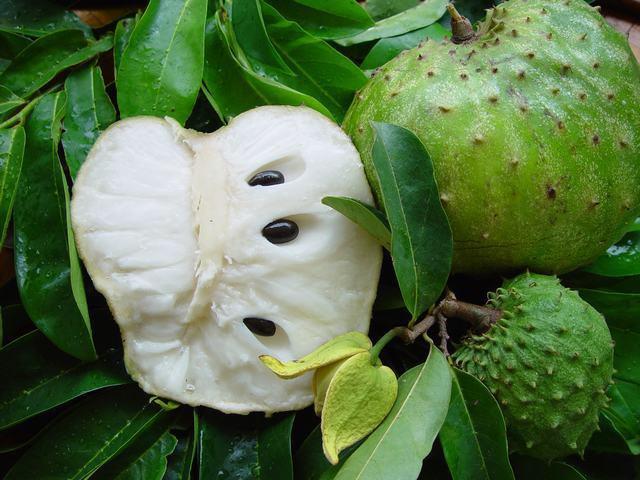 Frutti Guanabana