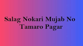 Salag Nokari Mujab No Tamaro Pagar