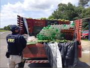 Motorista de Pedreiras é apreendido pela PRF com 212 litros de cachaça artesanal em Santo Antônio dos Lopes