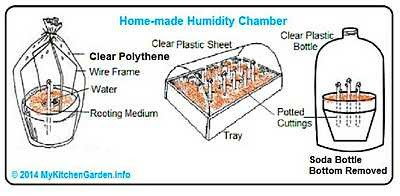 Humidity chamber for planting cuttings