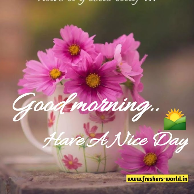 Good morning wishes with flowers || Good morning wishes with flowers images
