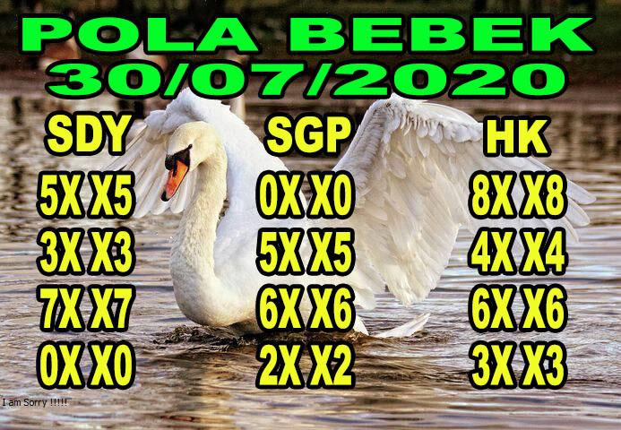 syair hk pola bebek 30 juli 2020
