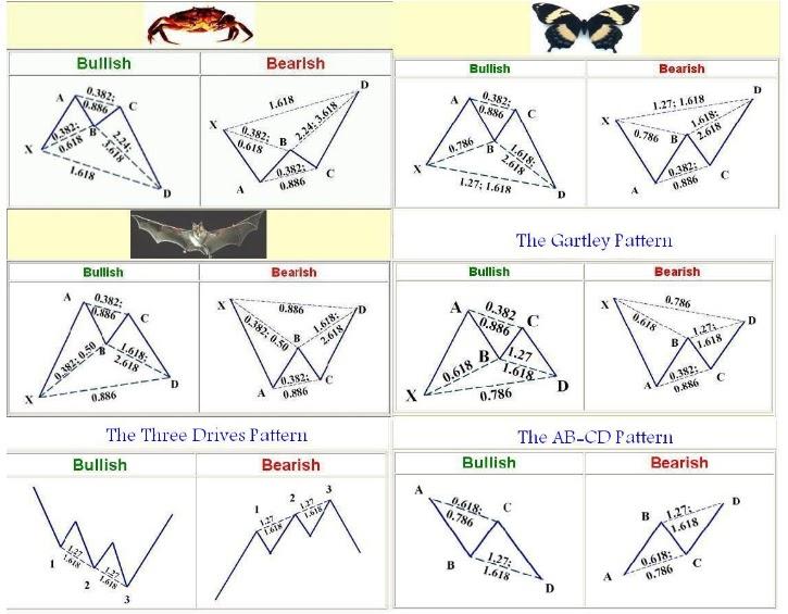 نماذج الهارمونك