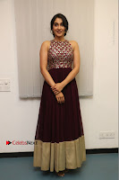 Actress Regina Candra Latest Stills in Maroon Long Dress at Saravanan Irukka Bayamaen Movie Success Meet .COM 0011.jpg