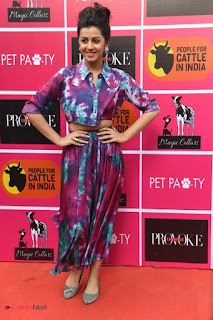 Nikki Galrani Pictures at Provoke Pet Party ~ Celebs Next