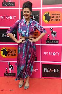 Nikki Galrani Pictures at Provoke Pet Party ~ Celebs Next