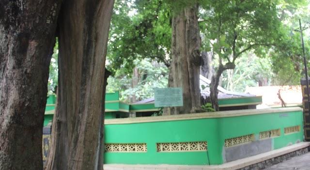 Ceritera Rakyat Pohon Jati di Makam Masin Jelmaan Manusia Sudah Berumur Ratusan Tahun