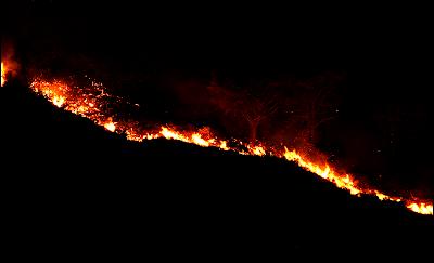Waldbrand auf Teneriffa im Mai 2021