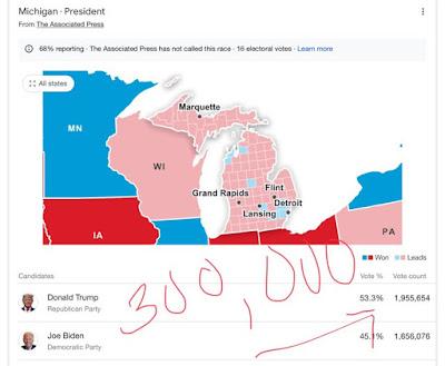 Michigan Voting Fraud Map