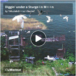 https://www.mixcloud.com/straatsalaat/diggin-under-a-sturgen-mn/