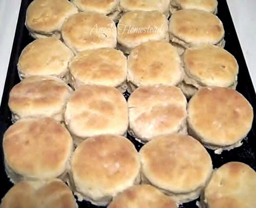 Home Sweet Homestead: Buttermilk Biscuits