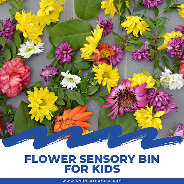 Flower sensory bin with real flowers + fine motor activity for toddlers and preschoolers
