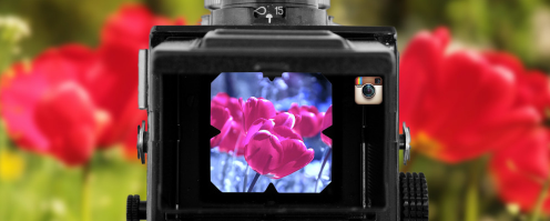 Five Instagram Alternatives for Photographers