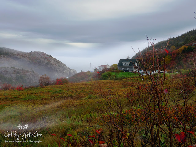 Newfoundland Photography Prints