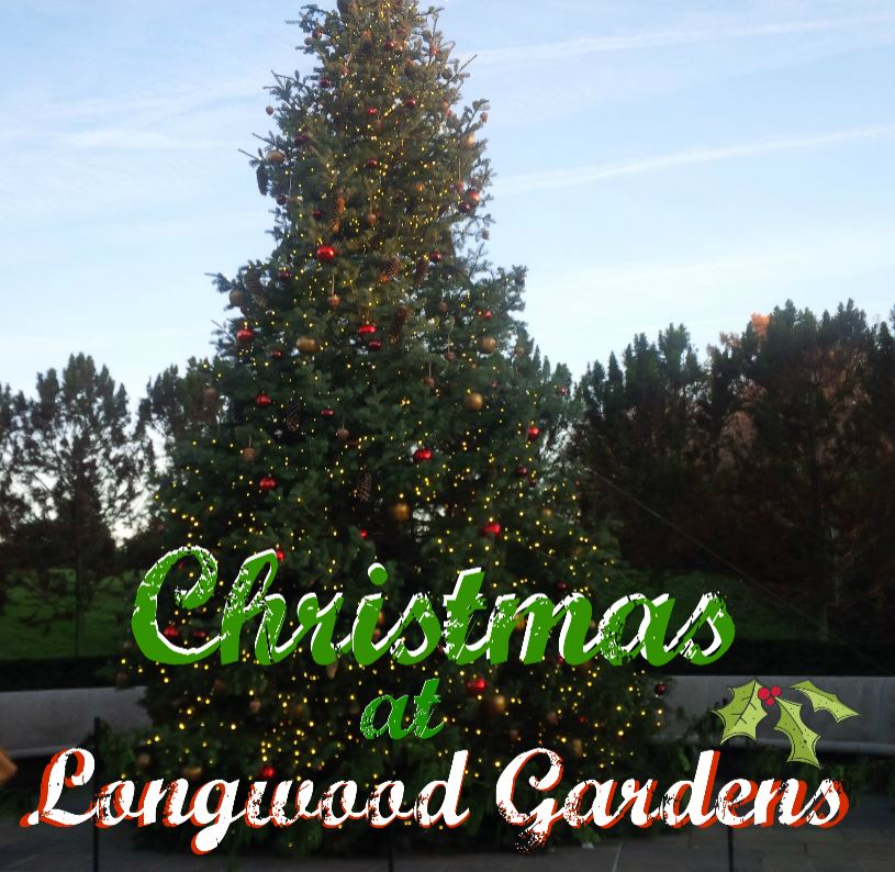 Fairytales And Fitness Christmas At Longwood Gardens